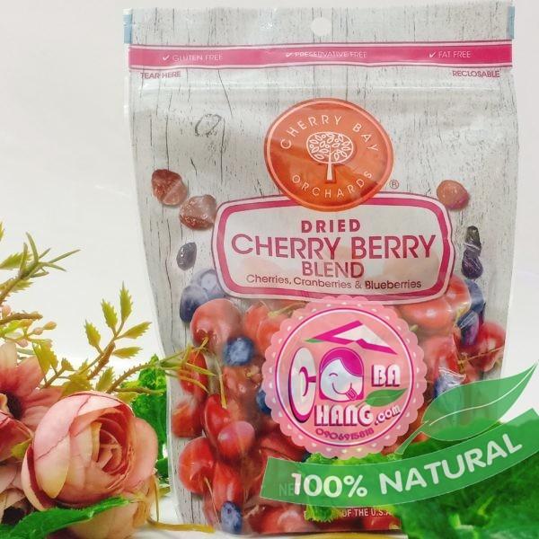 Mix việt quất cherry nam việt quất sấy khô 170g